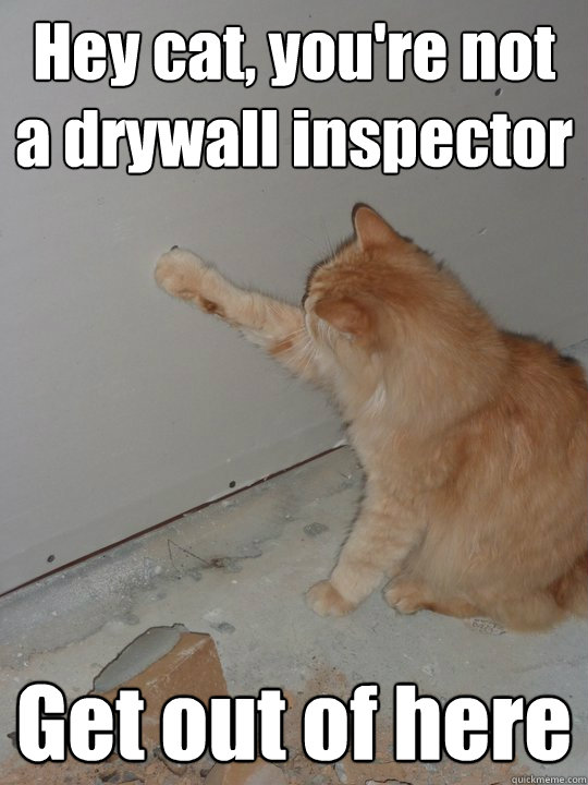 cat-drywall-inspector